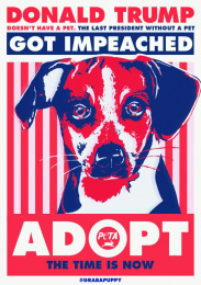 People For The Ethical Treatment Of Animals (PETA): Puppy, 4 Print Ad by The Community Miami