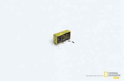 National Geographic Kids: Nature Never Gets Old - Ants Print Ad by Foxp2 Cape Town