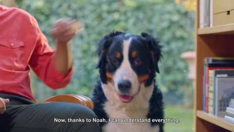"Vodafone: Noah ""Animal Translator"" Film by C-Section"