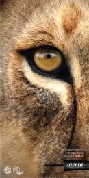 Lavera: Lion Print Ad by Rabarba