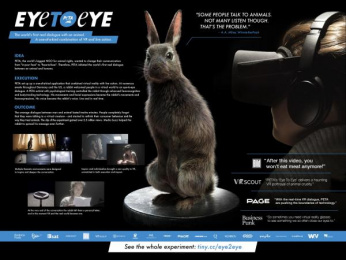 People For The Ethical Treatment Of Animals (PETA): Case study Film by Kolle Rebbe Hamburg