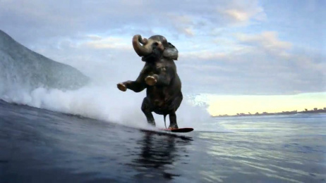 Accenture: Surfing Elephant Film by Y&R New York