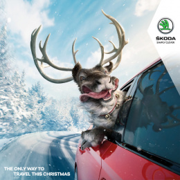 Skoda: Festive Joy Ride Print Ad by Boys and Girls Dublin, Illusion