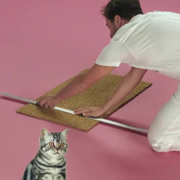 Whiskas: The Scratch Frame Film by Clemenger BBDO Sydney, The Glue Society