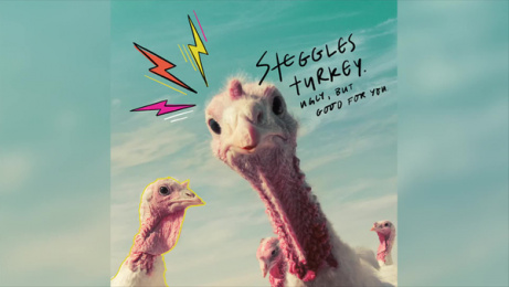 Steggles Turkey: Ugly but good for you: Rock Workout Digital Advert by M&C Saatchi Auckland