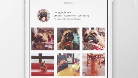 Pedigree: Case study Film by CLM BBDO Paris