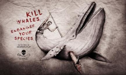 Sea Shepherd Conservation Society: Whale Print Ad by Heads Propaganda