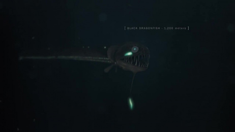 Veja: Fishes Film by ALMAP BBDO Brazil, CLAN FX
