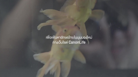 Canon: Thai Alphabet [original language] Film by Meour, Rabbit's Tale