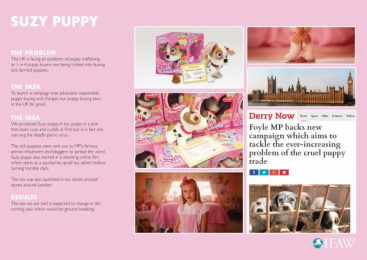 Ifaw/international Fund Of Animal Welfare: Pups [image]  Case study by J. Walter Thompson London