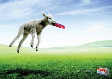 Bob Martin Conditioning Tablets: Lamb Print Ad by DraftFCB Johannesburg