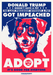 People For The Ethical Treatment Of Animals (PETA): Puppy, 3 Print Ad by The Community Miami