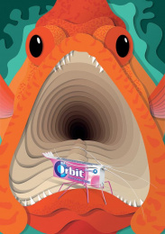 Orbit: Cleaner Shrimp Print Ad by DDB Johannesburg