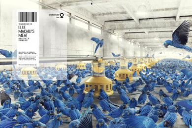 Conservation International: Blue macaw Print Ad by Fischer America Sao Paulo