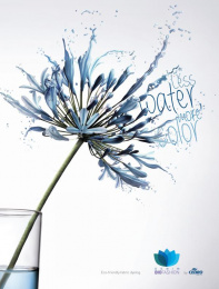 Cedro Textil: Flower, 2 Print Ad by Reciclo