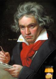 Bornier: Beethoven Print Ad by McCann Prague