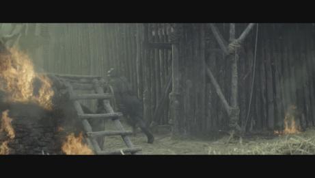 Puy du Fou: Eternels Film by Les Gros Mots, Quad