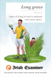 Irish Examiner: Long Grass Print Ad by Chemistry Dublin