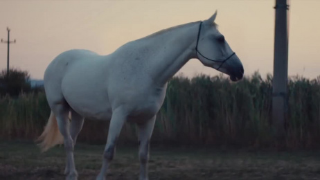 Mitsubishi Outlander: Ready when you are Film by Bonkers, True Utrecht