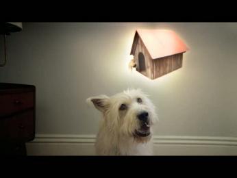 Travelers Insurance: Cat Burglar Film by Cut & Run, Epoch Films, Fallon Minneapolis, Rattling Stick