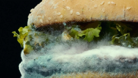 Burger King: Moldy Whopper Film by David&Goliath, Ingo Stockholm, Publicis Seattle