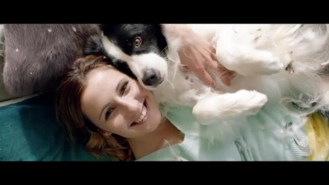 Pedigree: Feathers Film by Colenso BBDO Auckland, Finch