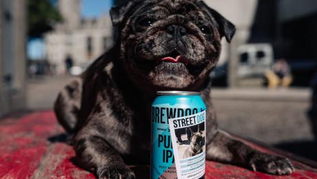 Brewdog Beer: StreetDog, 2 Print Ad by Uncommon London