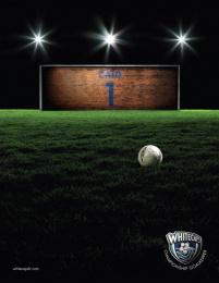 Whitecaps: Whitecaps Brickwall Print Ad by Publicis Toronto