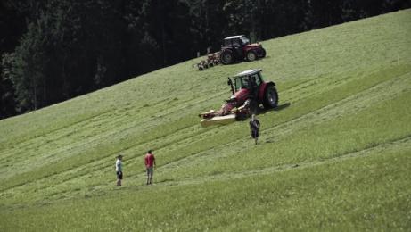 SalzburgMilch: Organic billboard Outdoor Advert by Traktor