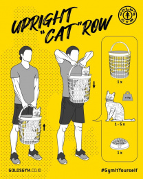 "Gold's Gym: Gym It Yourself - Upright ""Cat"" Row Digital Advert by LUP, Jakarta"