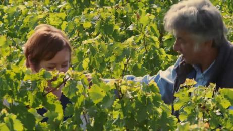 Lidl: Our Saint-Emilion Grand Cru wine Film by Rogue Films, TBWA\ London