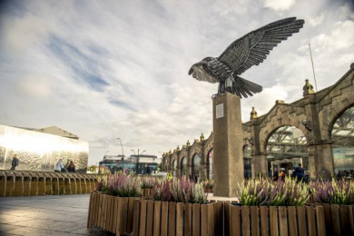IKEA: Allen the Peregrine, 1 Outdoor Advert by Mother London