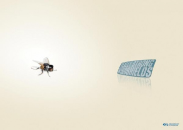 WINDSCREEN REPAIR: FLY Print Ad by Remo