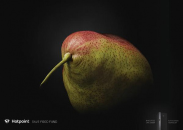 Hotpoint: Kiwi bird Print Ad by Friends Moscow