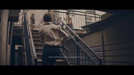 Kekkila: Green Haven Film by Folk Finland, Otto Production