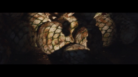 Patron Tequila: Patrón x Guillermo del Toro Film by MINDCASTLE , The Brooklyn Brothers