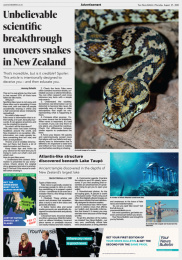 Netsafe: Your News Bulletin: Newspaper Print Ad by Motion Sickness Auckland