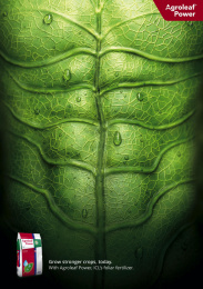 ICL: Grow stronger crops Print Ad by Bureau Loos, Rotterdam, Netherlands