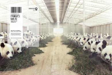 Conservation International: Panda Print Ad by Fischer America Sao Paulo