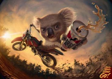 Power Horse: Koala Print Ad by Rocket Yard