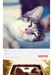 Mapfre: Cat Print Ad by Talent Marcel