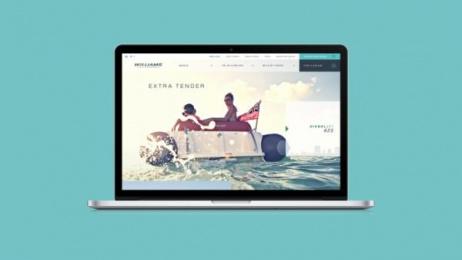 Williams Jet Tenders: The Williams website, 1 Digital Advert by Thinking Juice