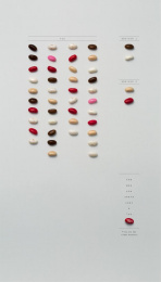 Fini: Older Brother Print Ad by Borghi/Lowe Sao Paulo
