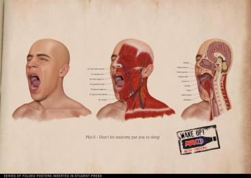 Pepsi Max: Anatomy Print Ad by BBDO Moscow