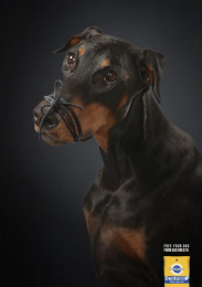 Pedigree: Free Your Dog, 2 Print Ad by Miami Ad School Madrid