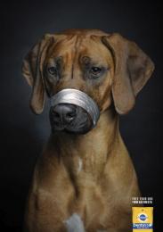 Pedigree: Free Your Dog, 3 Print Ad by Miami Ad School Madrid