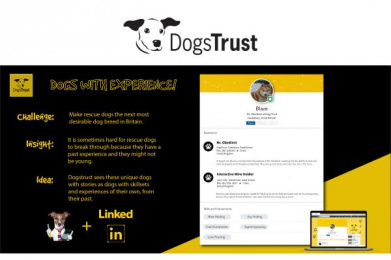 Dogs Trust: Dogs Trust Print Ad by Miami Ad School San Francisco