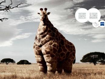 Zeiss: GIRAFFE Outdoor Advert by TBWA Paris