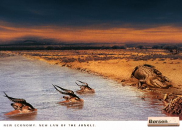 Borsen: CROCODILE Print Ad by Umwelt