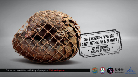 UNEP: Forced Migration, 3 Print Ad by Ogilvy & Mather Mumbai